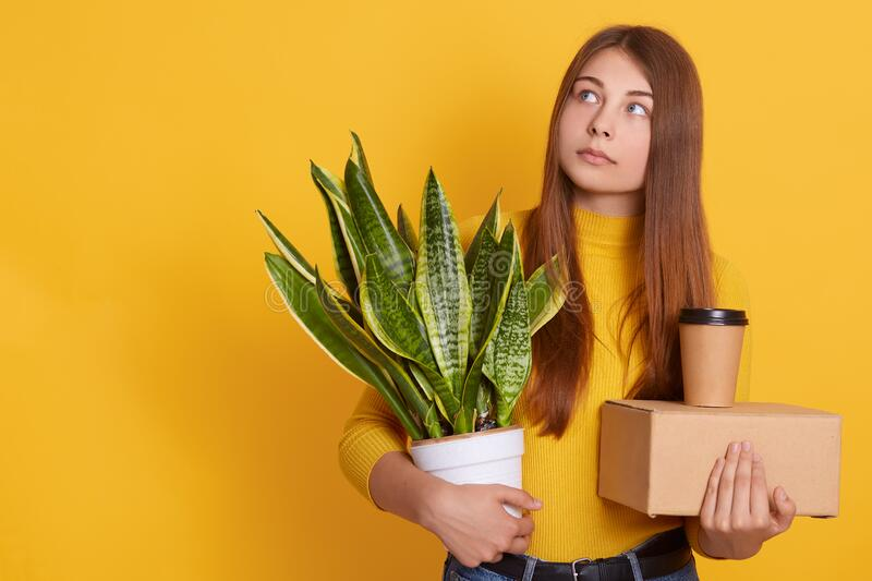 Pensive lady dresses casual clothing holding her staff and flowerpot in hands, looking aside, thinks about her dismissal, being. Sad, looks thoughtful, standing royalty free stock photos